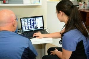 Annex animal hospital staff members looking at x-ray images on a laptop